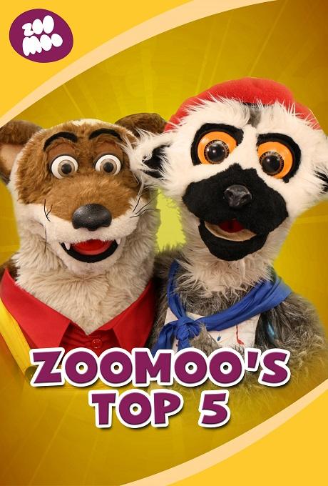 Top 5 ZooMoo